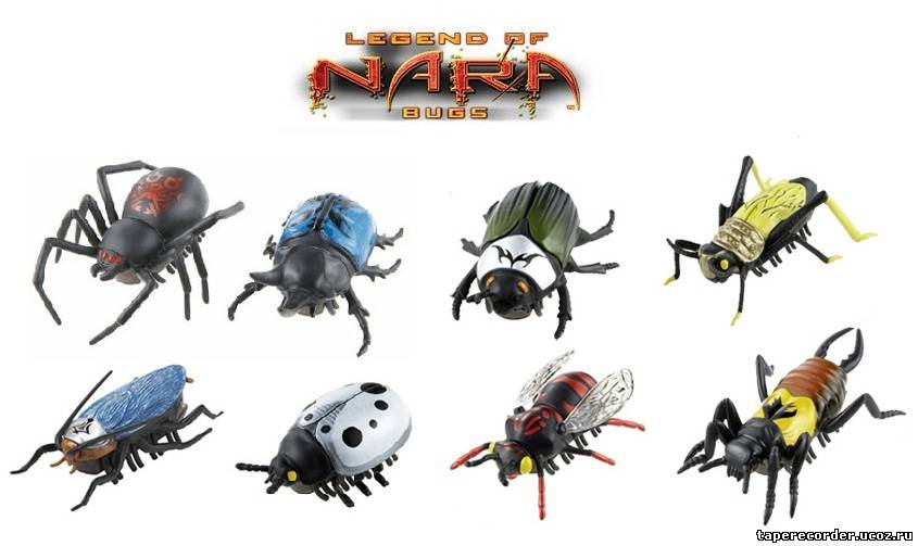 картинки нано жуки